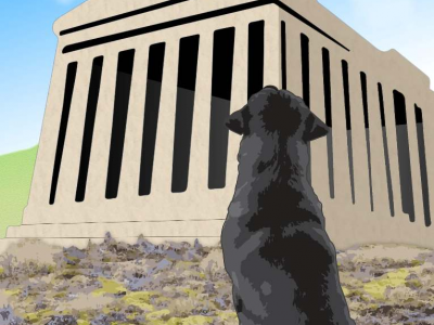 The Dog on the Acropolis